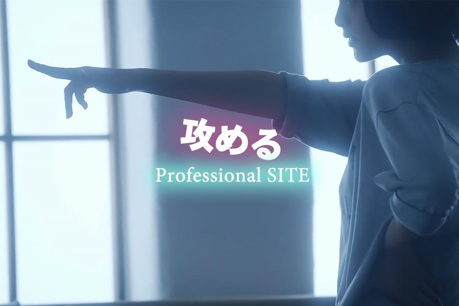 プロフェッショナルWEB